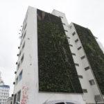 Jardim vertical refresca prédio, mas custo é alto